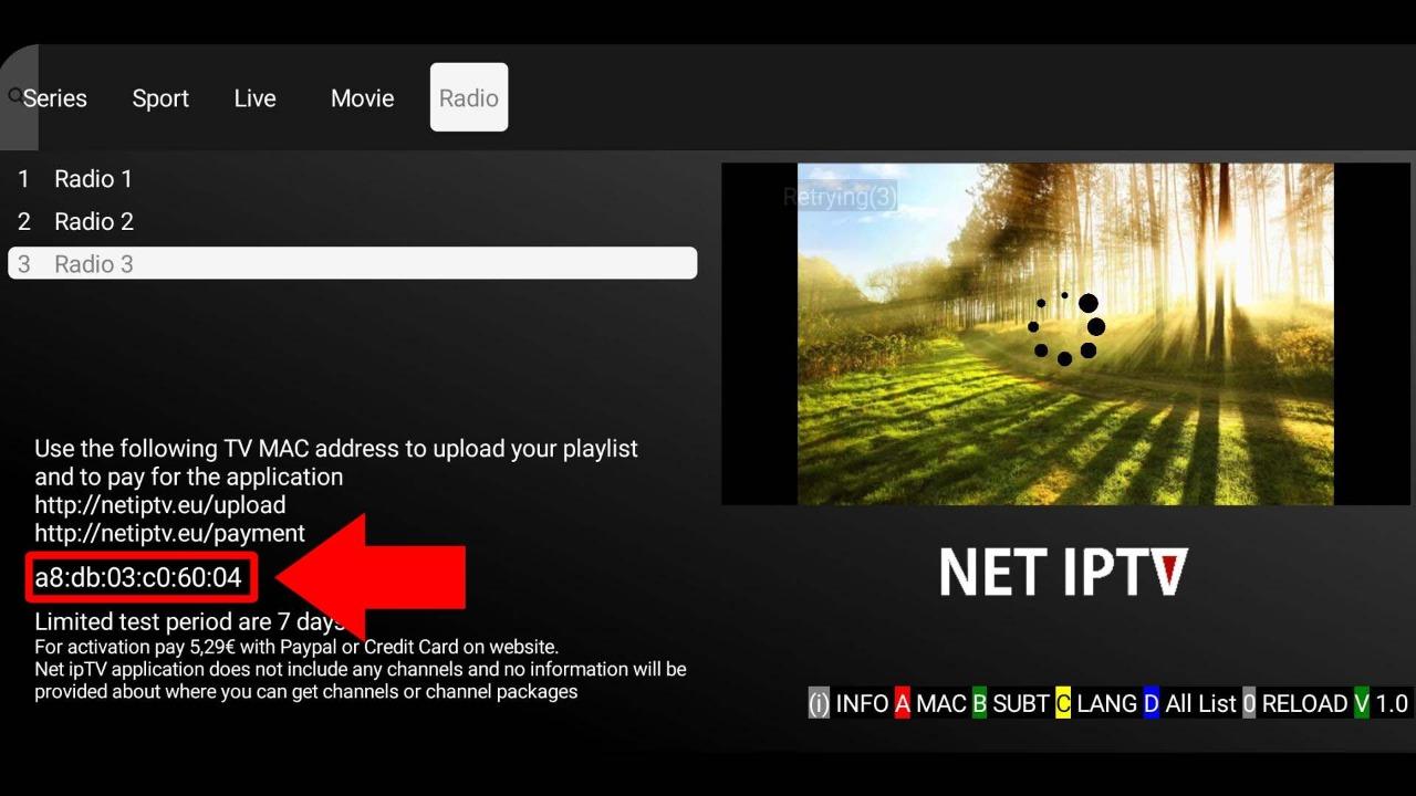 Net IPTV MAC Address